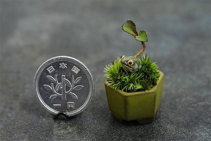 20 маленьких садов, которые поместятся в ладошке (20 фото)