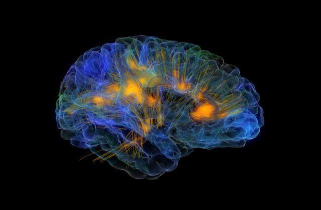 Манипуляция мозгом