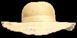 Дамские шляпки