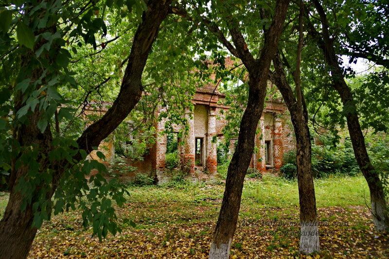 Руины. Усадьба Герцена Покровское-Засекино