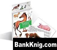Книга Домашние животные и их детеныши. Дидактические карточки. jpg 6,4Мб