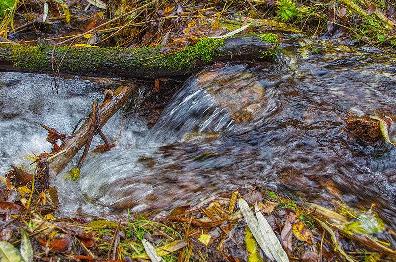 Осеняя вода