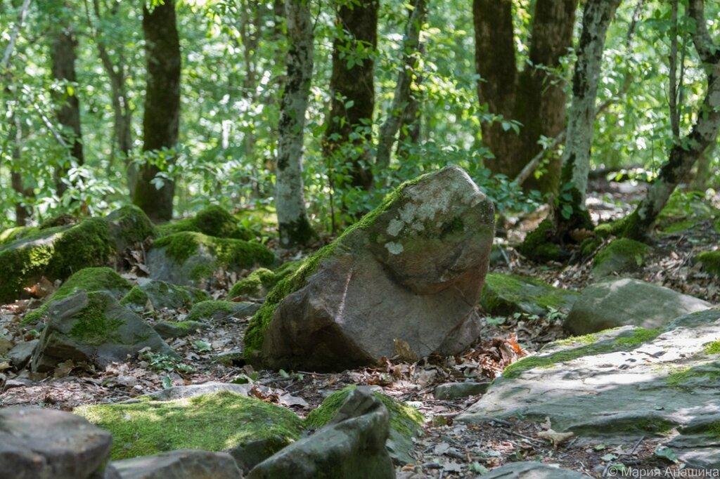 Камни около дольмена, Крикун-гора