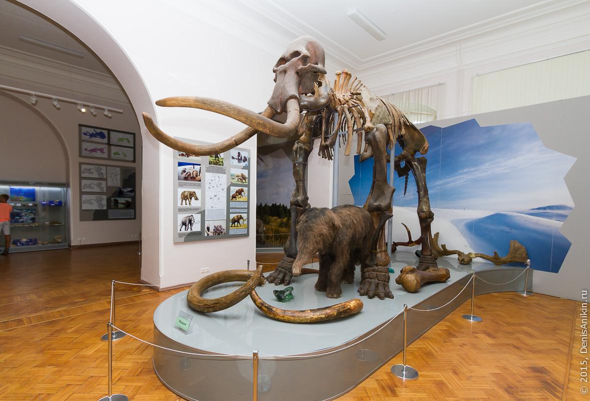 Астраханский краеведческий музей 10
