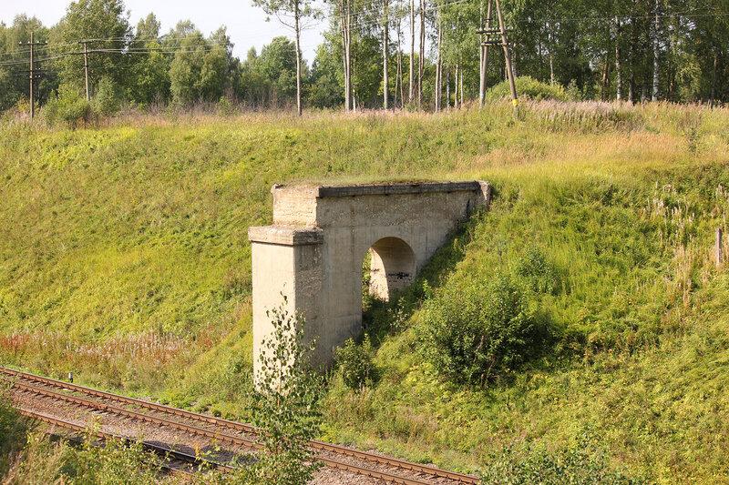 Бык моста Заплюсской УЖД