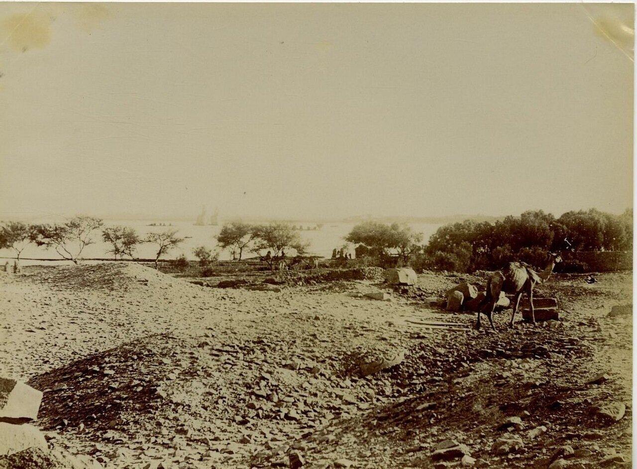 Колоссы Мемнона. 1875