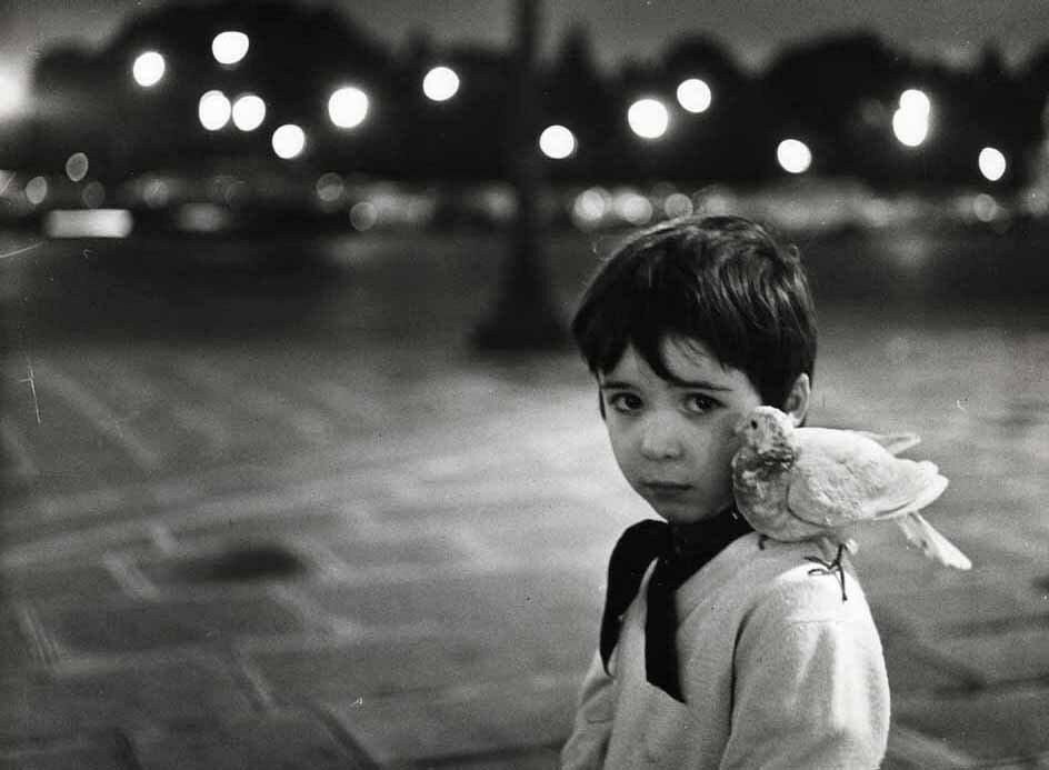 Портрет сына Петра Дерлона