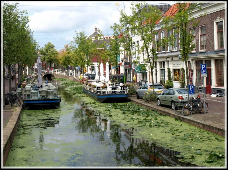 holland2 122.jpg