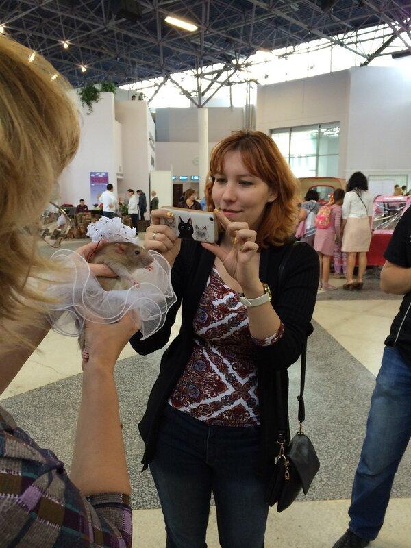 http://img-fotki.yandex.ru/get/6846/17618009.77/0_a4ee9_de069e0b_XL.jpg