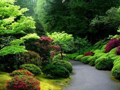французский сад прованс