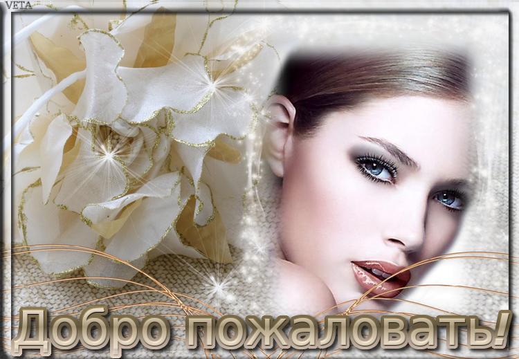 Добро пожаловать в мой блог!