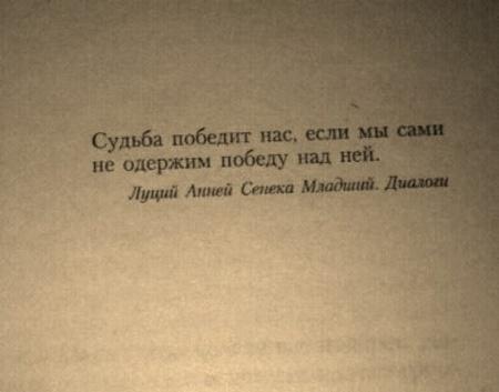 Книга Вишневский. Повторение судьбы