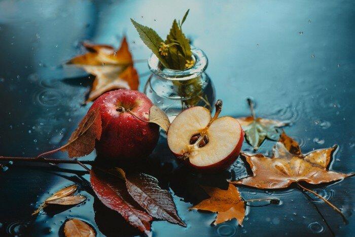 Дивная пора осень. Дождливый натюрморт. Автор работ: Дина Беленко (Dina Belenko).