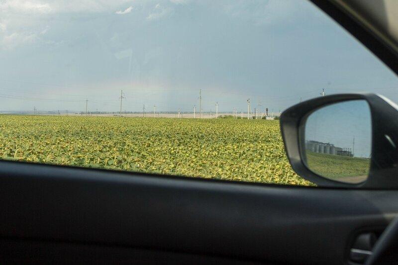 Поля подсолнечника и радуга, Татарстан