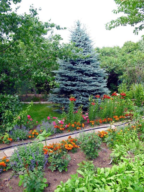 В райском садике
