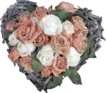 MagicalReality_VinMem1_pink-white rose heart.png