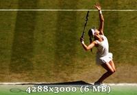 http://img-fotki.yandex.ru/get/6847/14186792.4d/0_da5a8_ea9edd17_orig.jpg