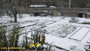 огород под снегом