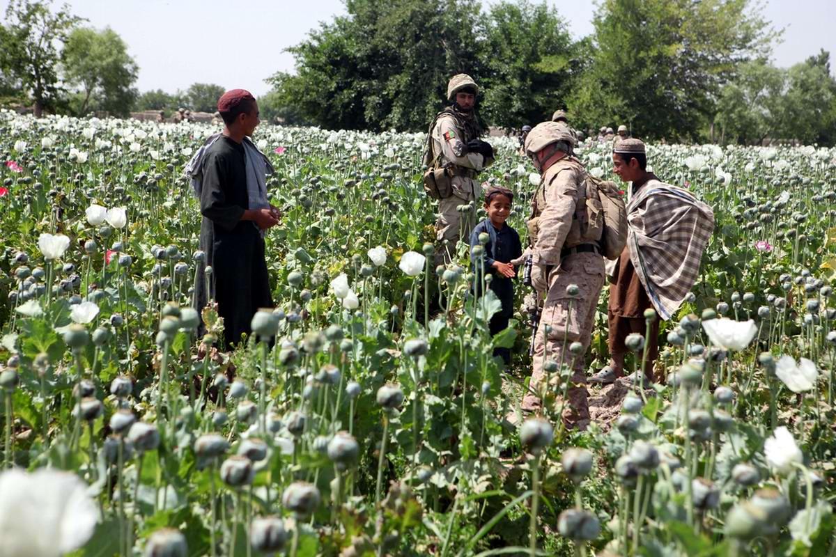 Посреди маковых полей Афганистана - фотографии военнослужащих корпуса морской пехоты США (11)