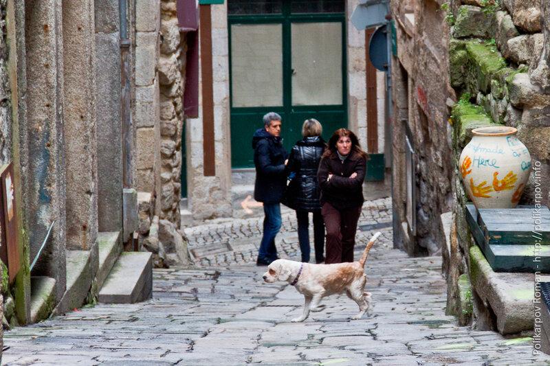 0 c2b85 20e84abd XL Порту   самый невероятный город Португалии