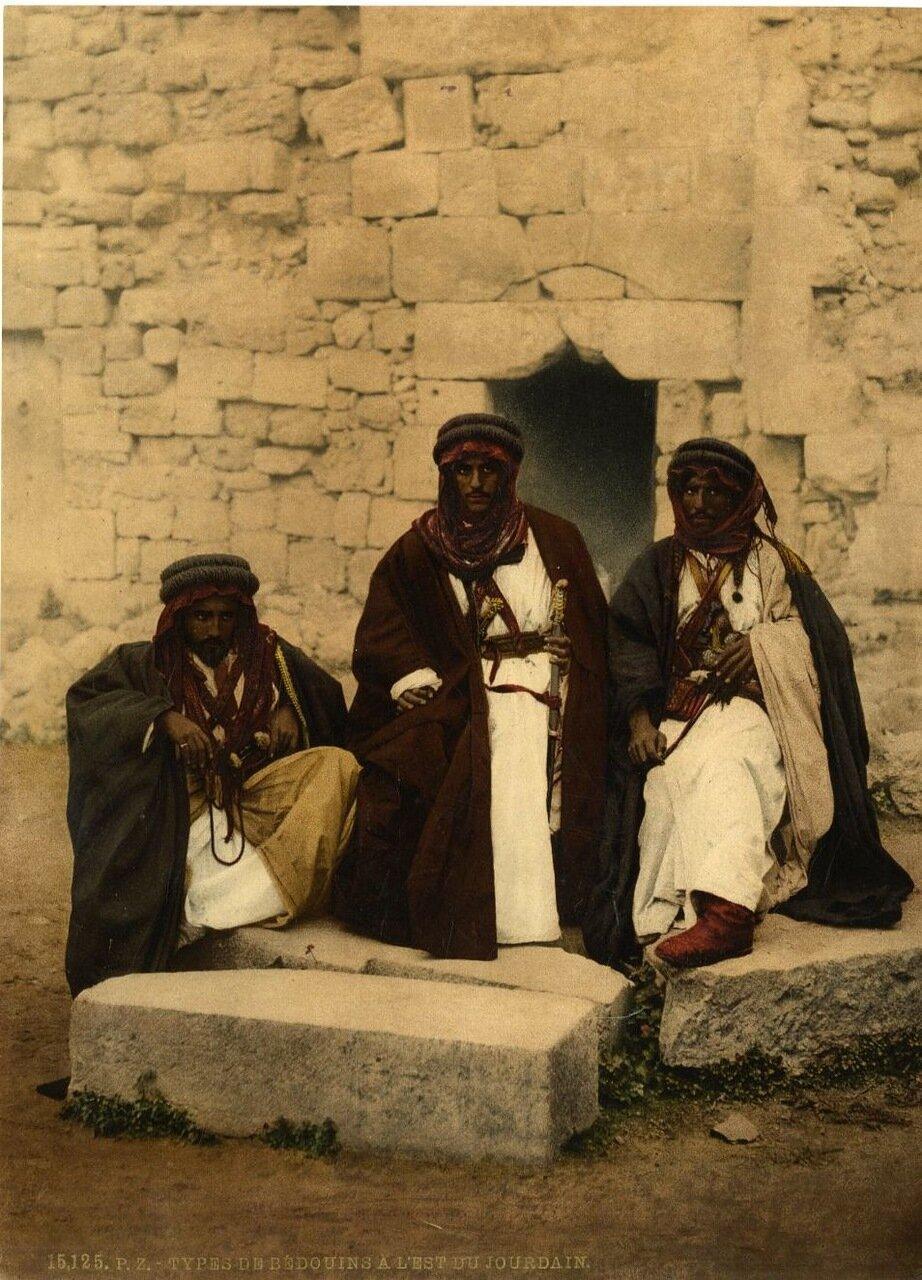 Типы бедуинов к востоку от Иордана
