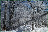 http://img-fotki.yandex.ru/get/68556/15842935.268/0_dfbf3_a18f053e_orig.png