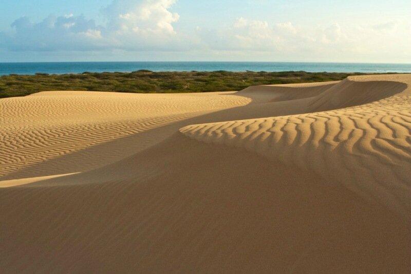 Невероятно красивая пустыня в парке Меданос де Коро 0 1c59e3 2ac1f09b XL