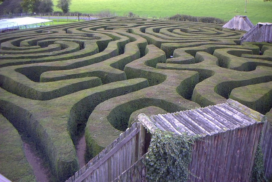 1. Лонглит (Лонглит, графство Уилтшир, Англия) Состоящий более чем из 16 000 английских тисов хедж-л