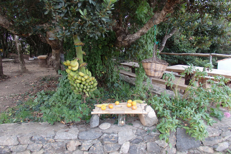 Треккинг на острове La Gomera (канары) январь 2016
