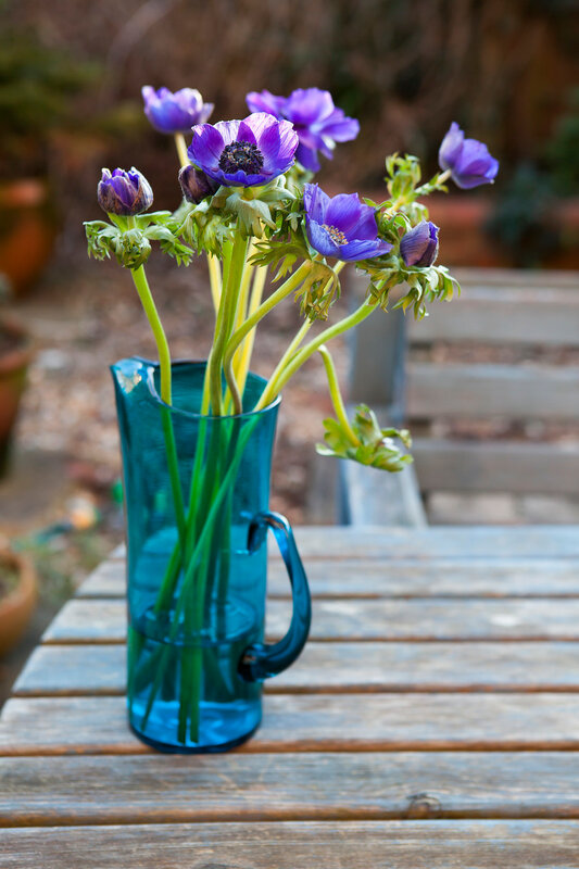 beautiful anemone flowers in a glass vase on the table.