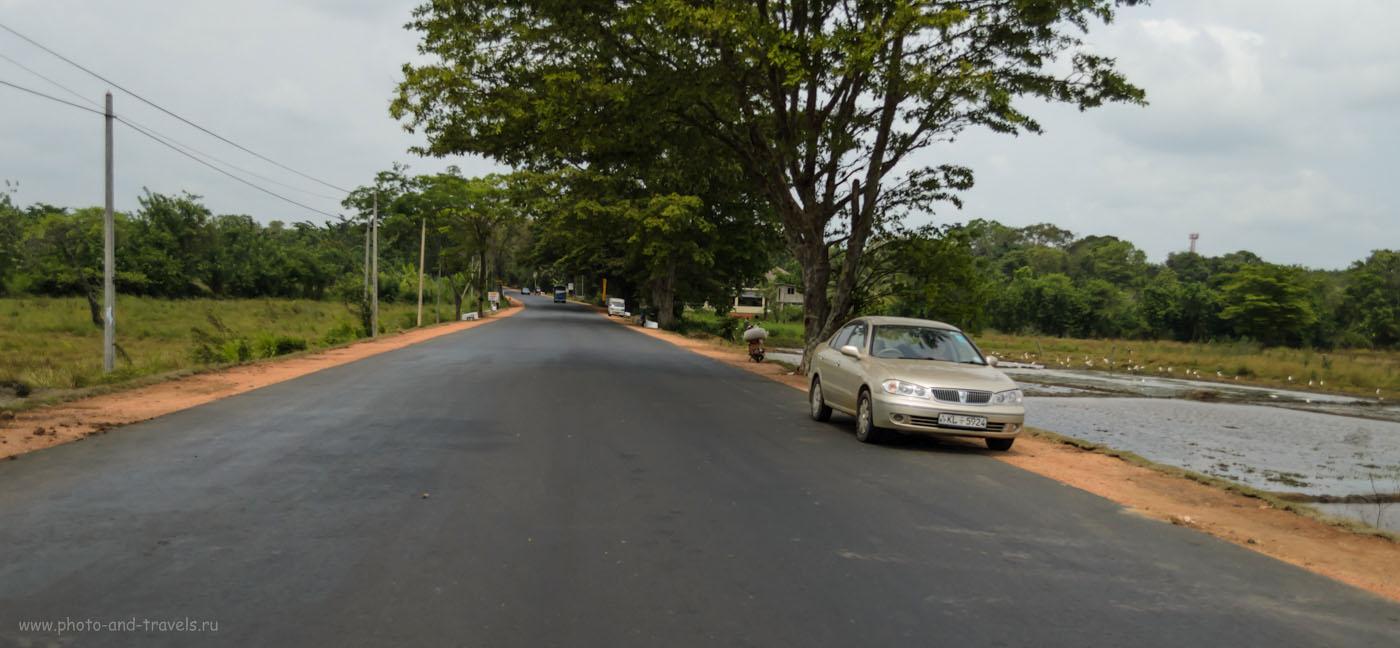 Фото 2. Тяжело ли водить машину в Шри-Ланке? На участке от Нувара-Элия до Канди, затем до Сигирии и далее до Тринкомали (Trincomalee) трасса отличного качества, сложностей нет. 1/3200, 3.8, 400, 22