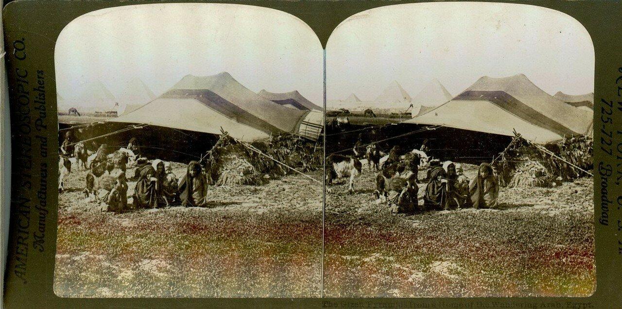 Гиза. Пирамиды и жилища местных арабов