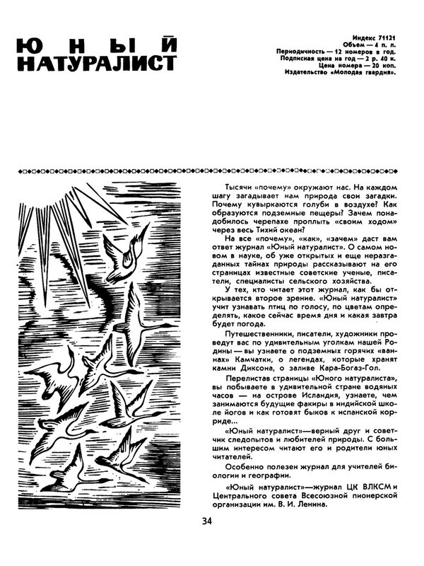 kj34.jpg