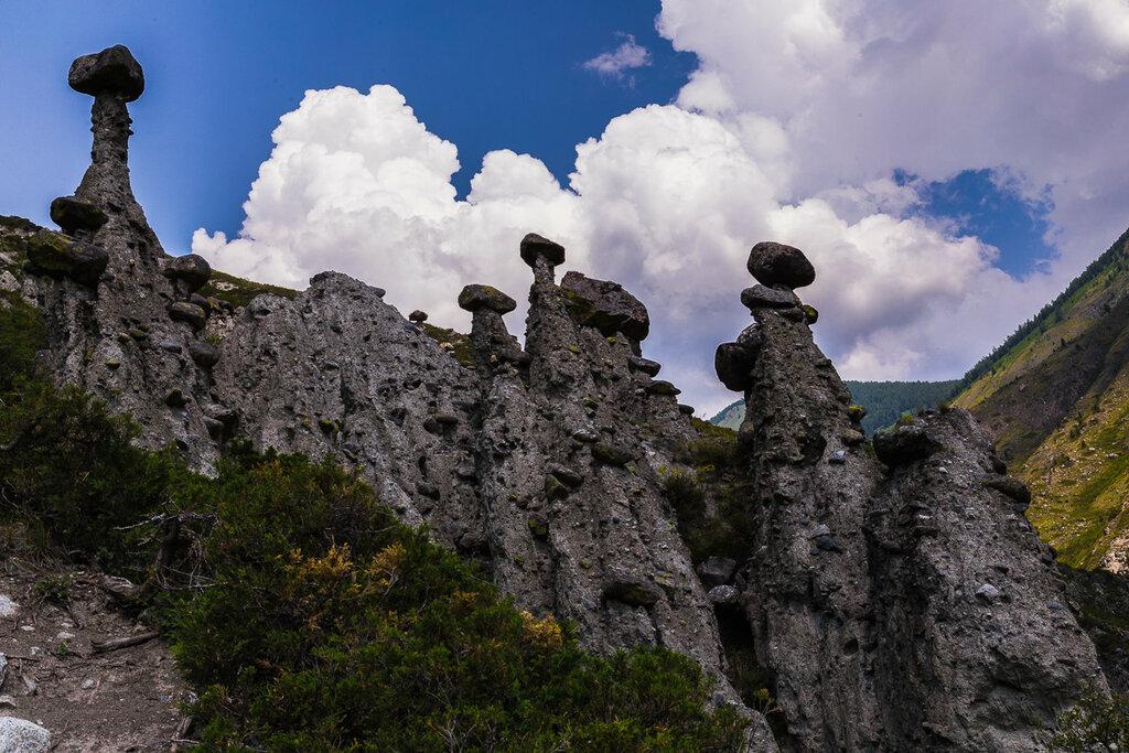 Долина Чулышмана. Ущелье Карасу. Урочище Аккурум (Ак-Корум). Каменные грибы