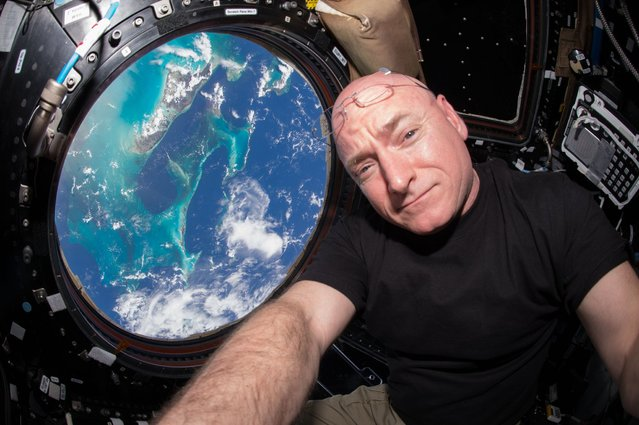 Expedition 44 flight engineer and NASA astronaut Scott Kelly seen inside the Cupola, a special modul