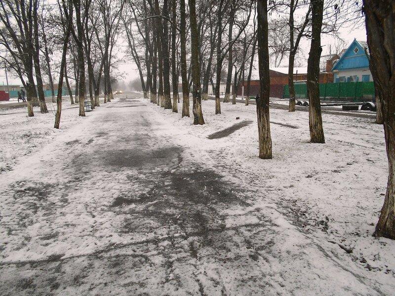 Снег, в парке ... DSCN3828.JPG