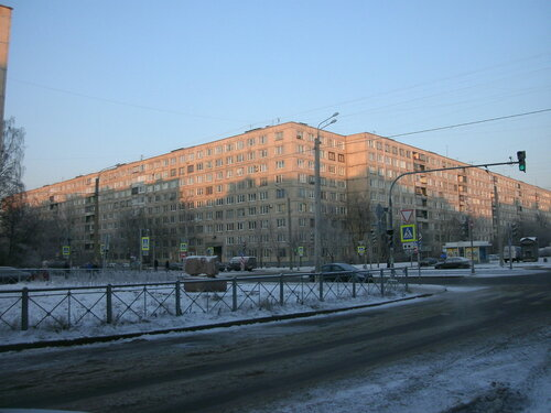 Купчинская ул. 6