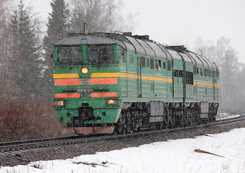 2ТЭ116-1217 на перегоне Княжьи горы - Муриково, участок 165 км - Муриково