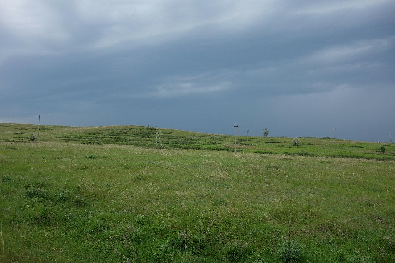 пятна травы