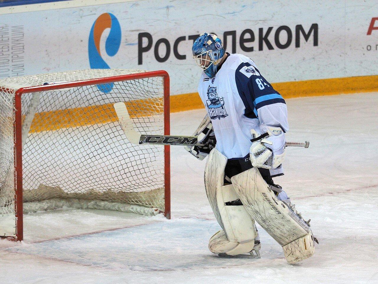 39Плей-офф МХЛ 2016 1/4 Стальные Лисы - Сибирские Снайперы 21.03.2016