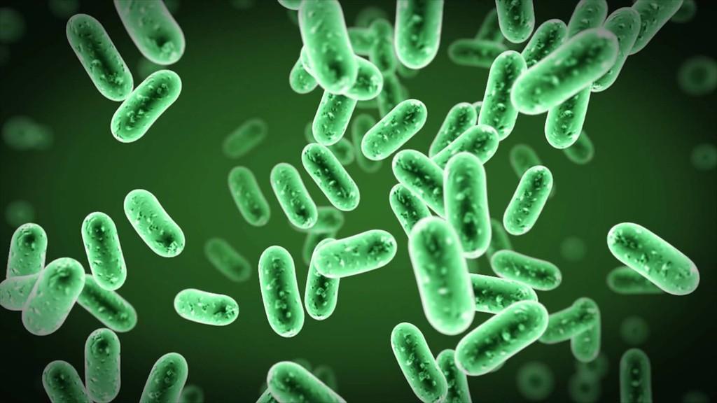 7. Бактерии (34 000 лет) В середине 90-х группа ученых заявила, что им удалось оживить колонию бакте