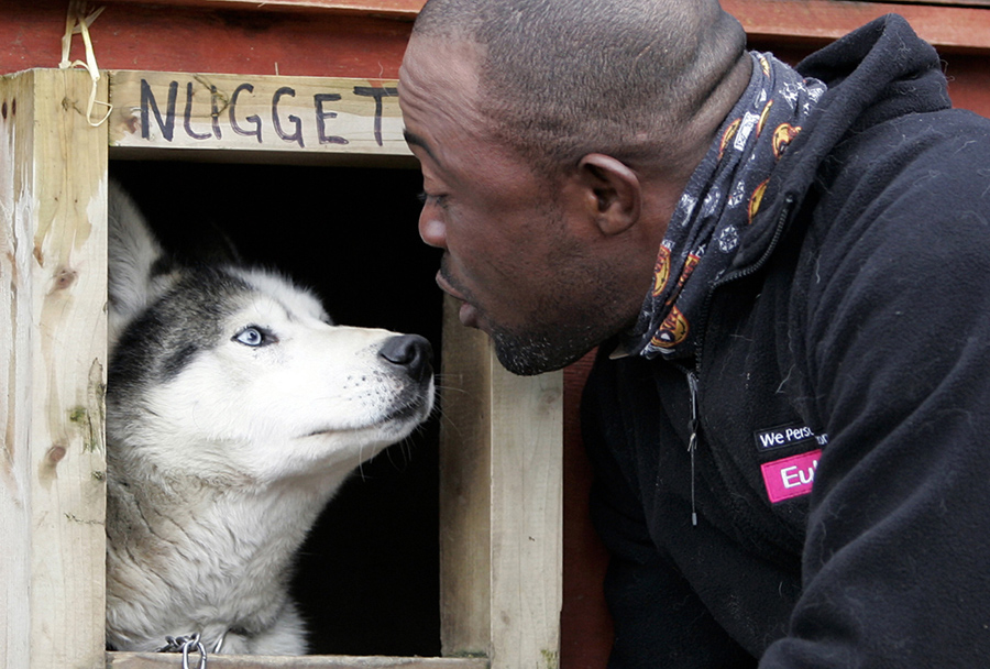 Jamaican Devon Anderson looks at one of his huskies in Aviemore, Scotland, on January 17, 2006. Devo