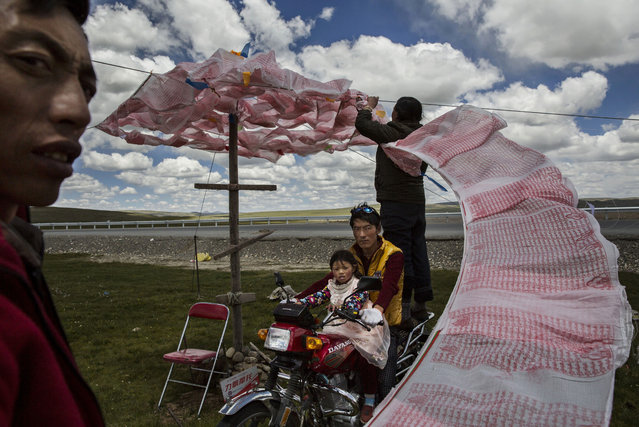 Kevin Frayer, Canada. Shortlist, Professional , People. Tibetan nomads put up a string of Buddhist p