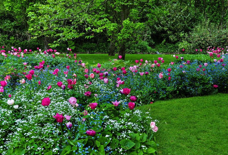 Майский ветер напоен ароматом цветов