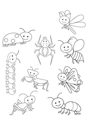 Раскраски для малышей - Насекомые