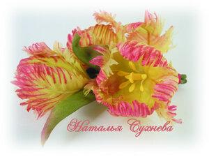 Весенние цветы-тюльпаны, подснежники и прочие... 0_14b503_518b5c6c_M