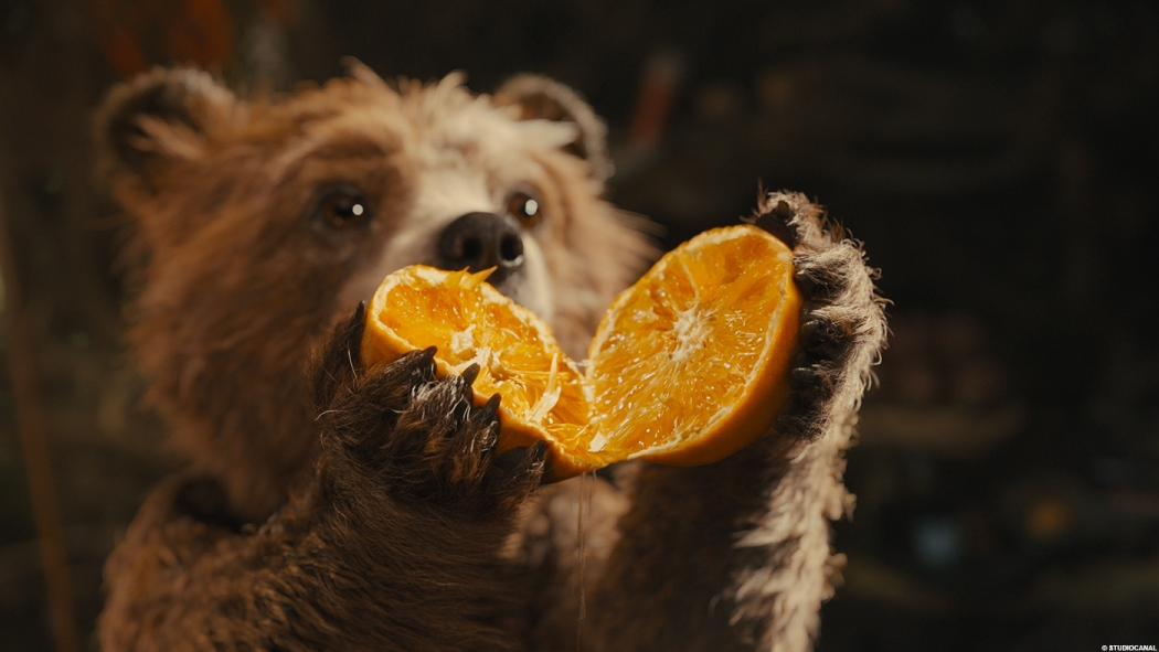 paddington_orange.jpg