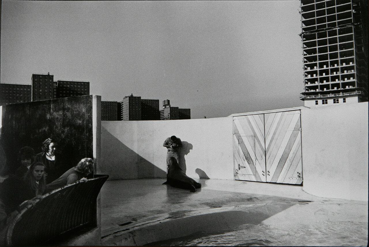 1964. Аквариум, Нью-Йорк, Кони-Айленд