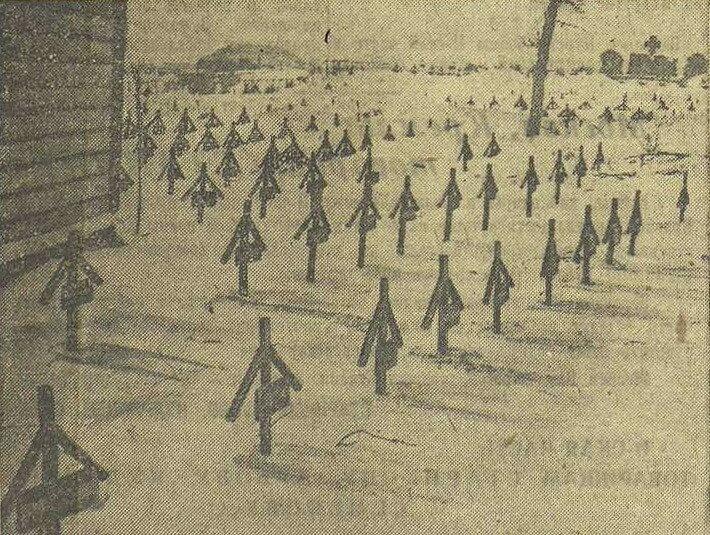 кладбище немецких солдат и офицеров