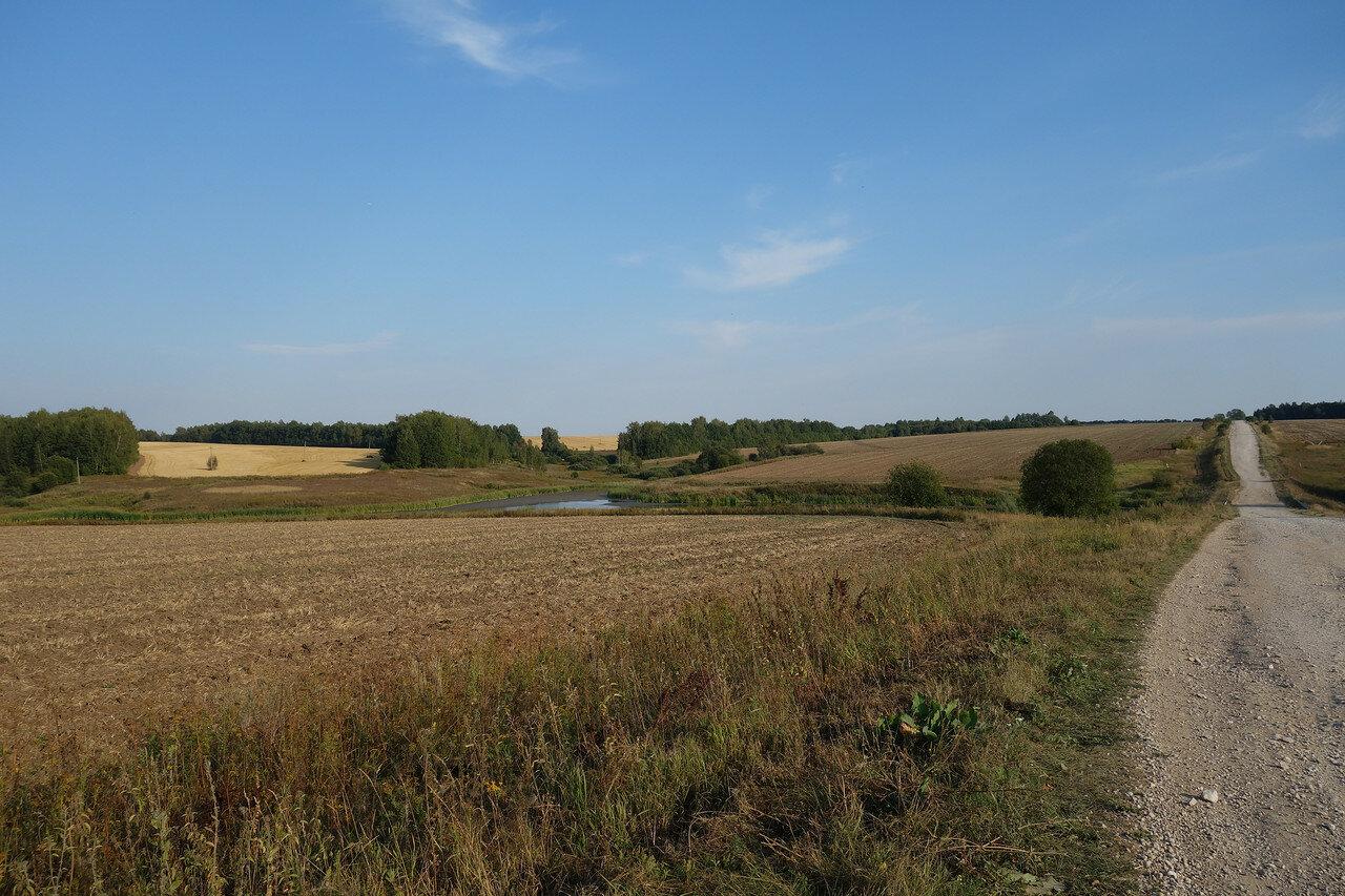 поля и перелески Алексинского уезда